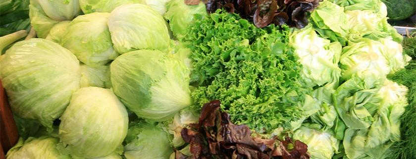 lettuce-group