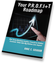 P.R.O.F.I+T Roadmap Ebook