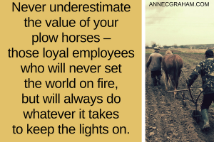 Value of Your Plow Horses