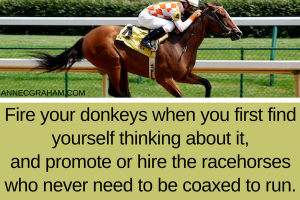 Hire the Racehorses